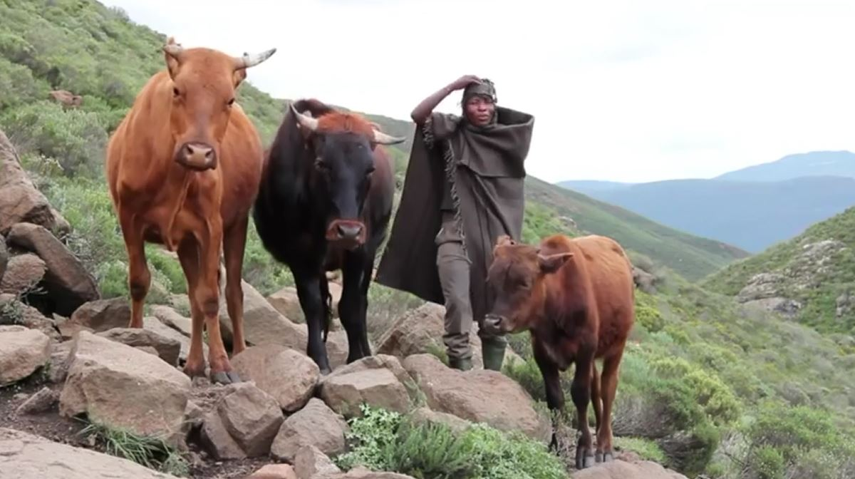 Lesotho, the Kingdom in the Sky