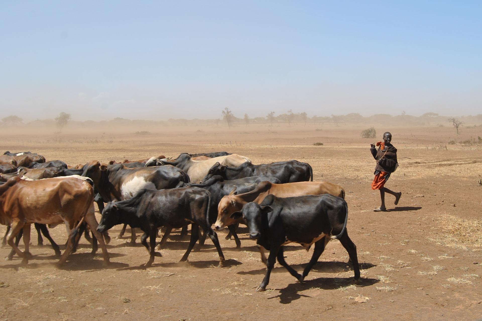 nomadenvolk in ostafrika