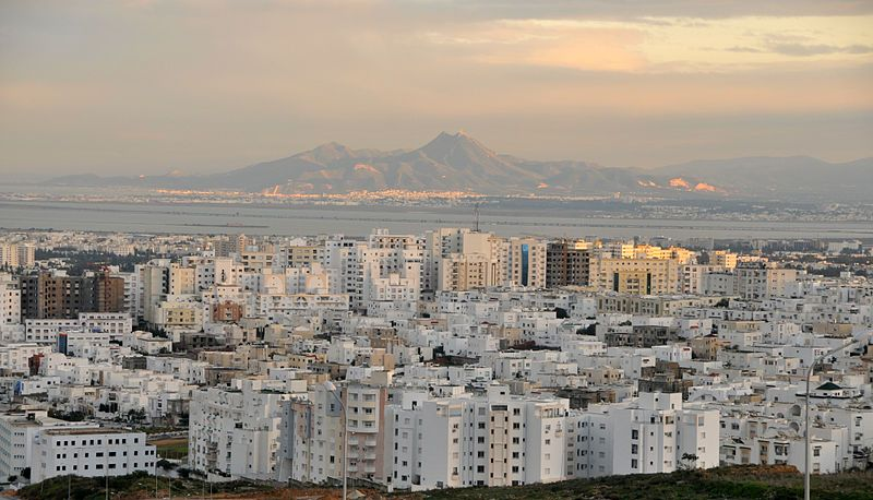 Panorama von Tunis (c) Citizen59